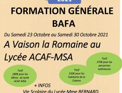 BAFA  / BAFD 2021